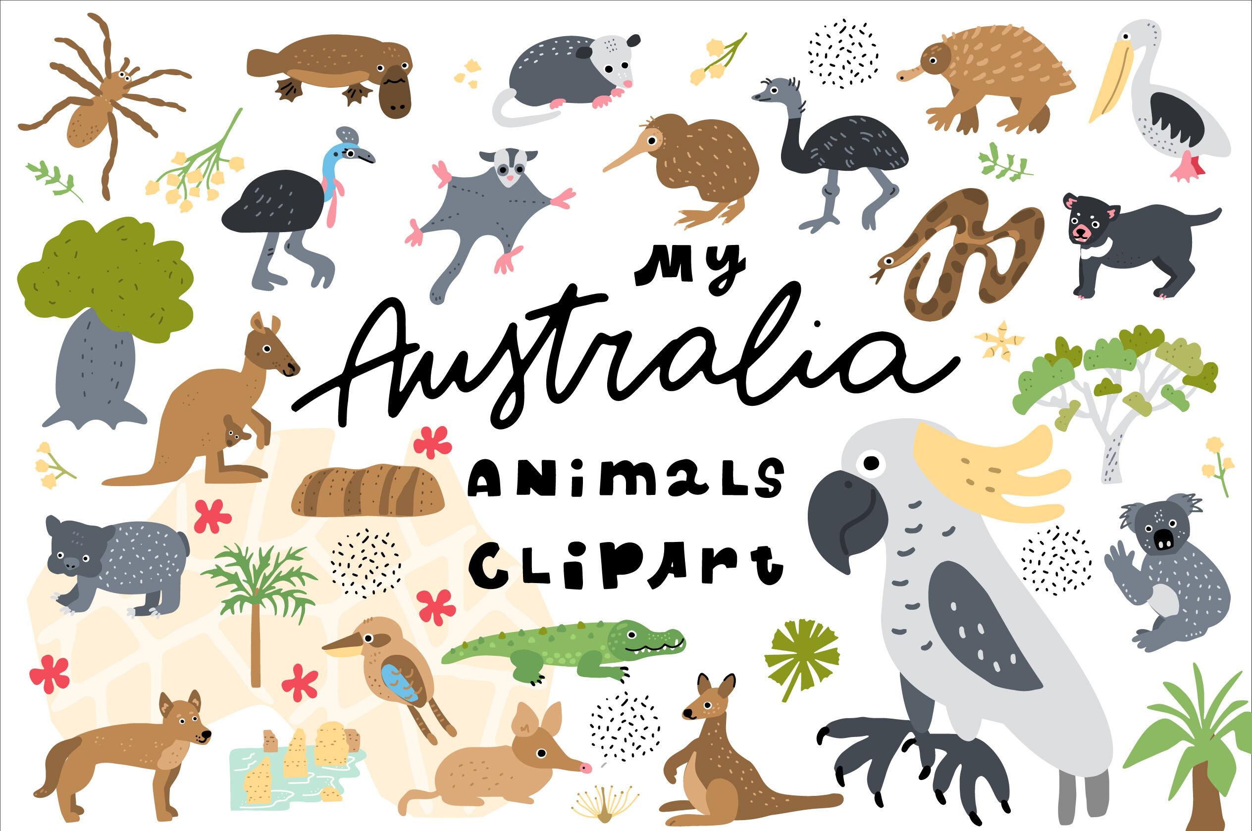 My Australia Animals Clipart By Ksenias Store Thehungryjpeg Com