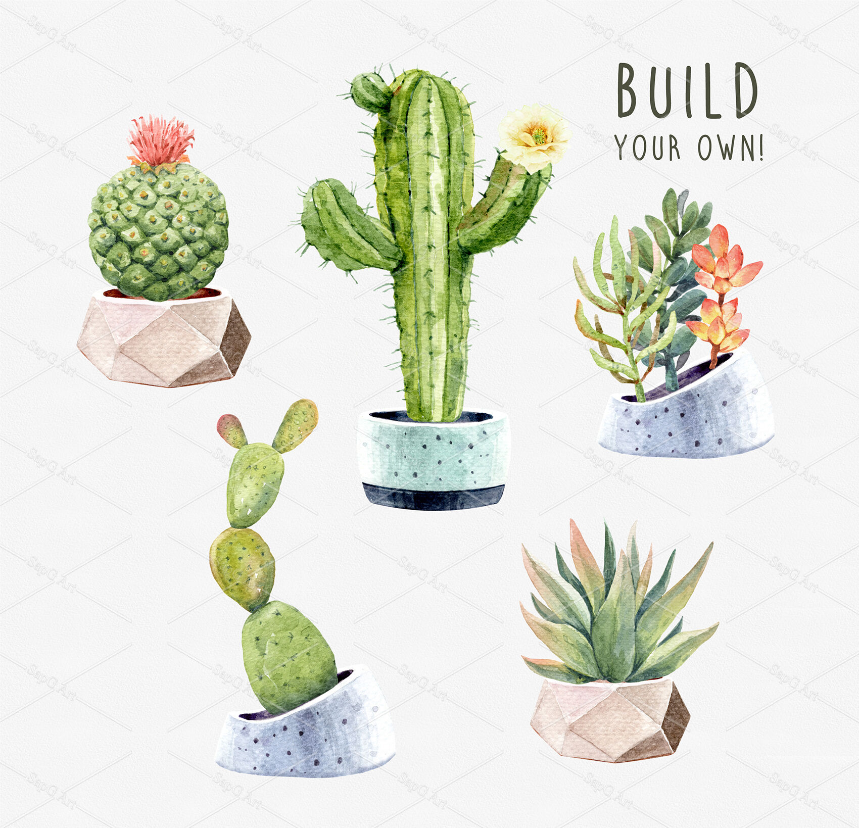 Watercolor Cactus Clipart Cacti Succulents With Pots Digital Files By Sapg Art Thehungryjpeg Com