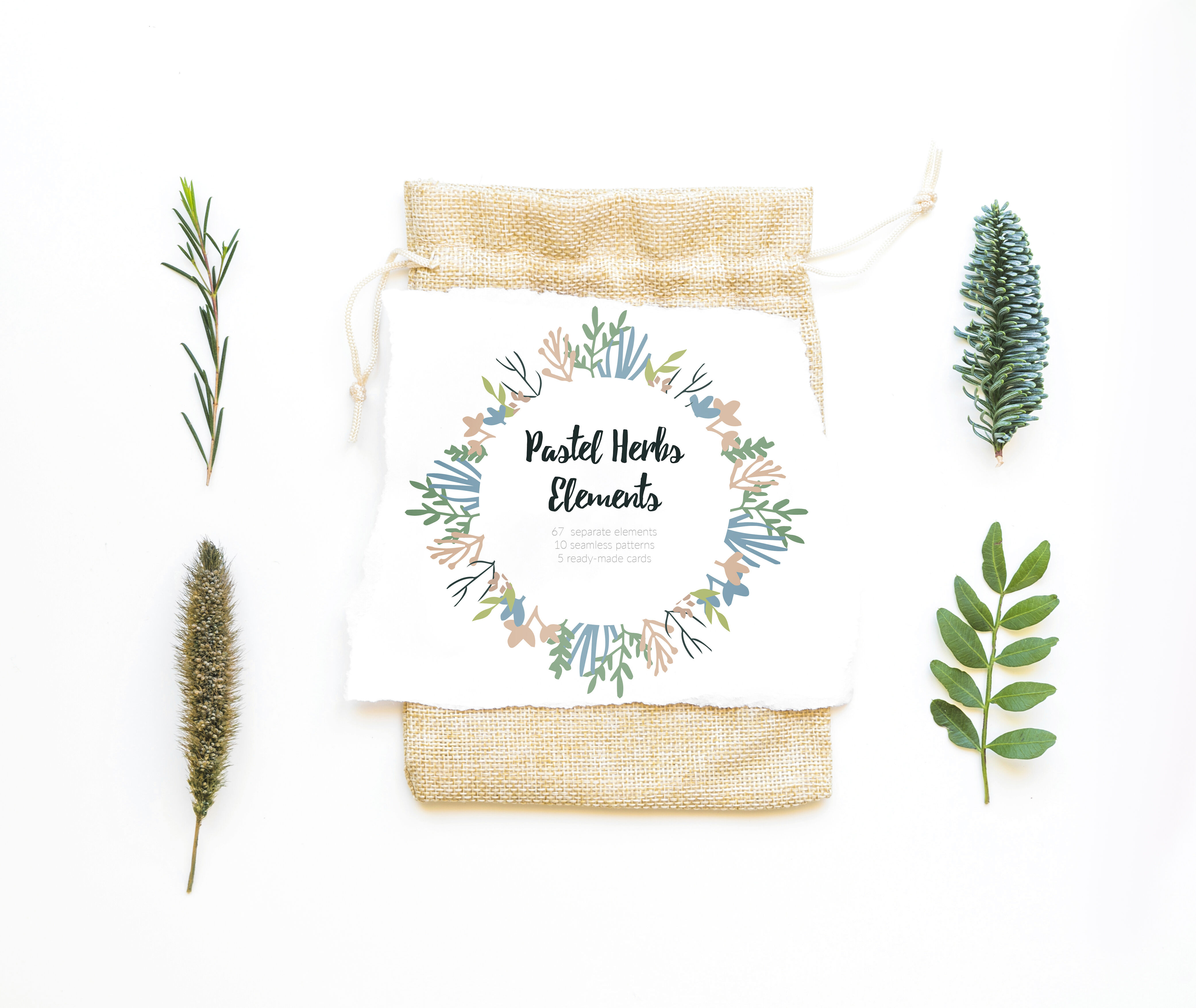 Pastel Herbs Vector Elements By Annk Art Thehungryjpeg Com