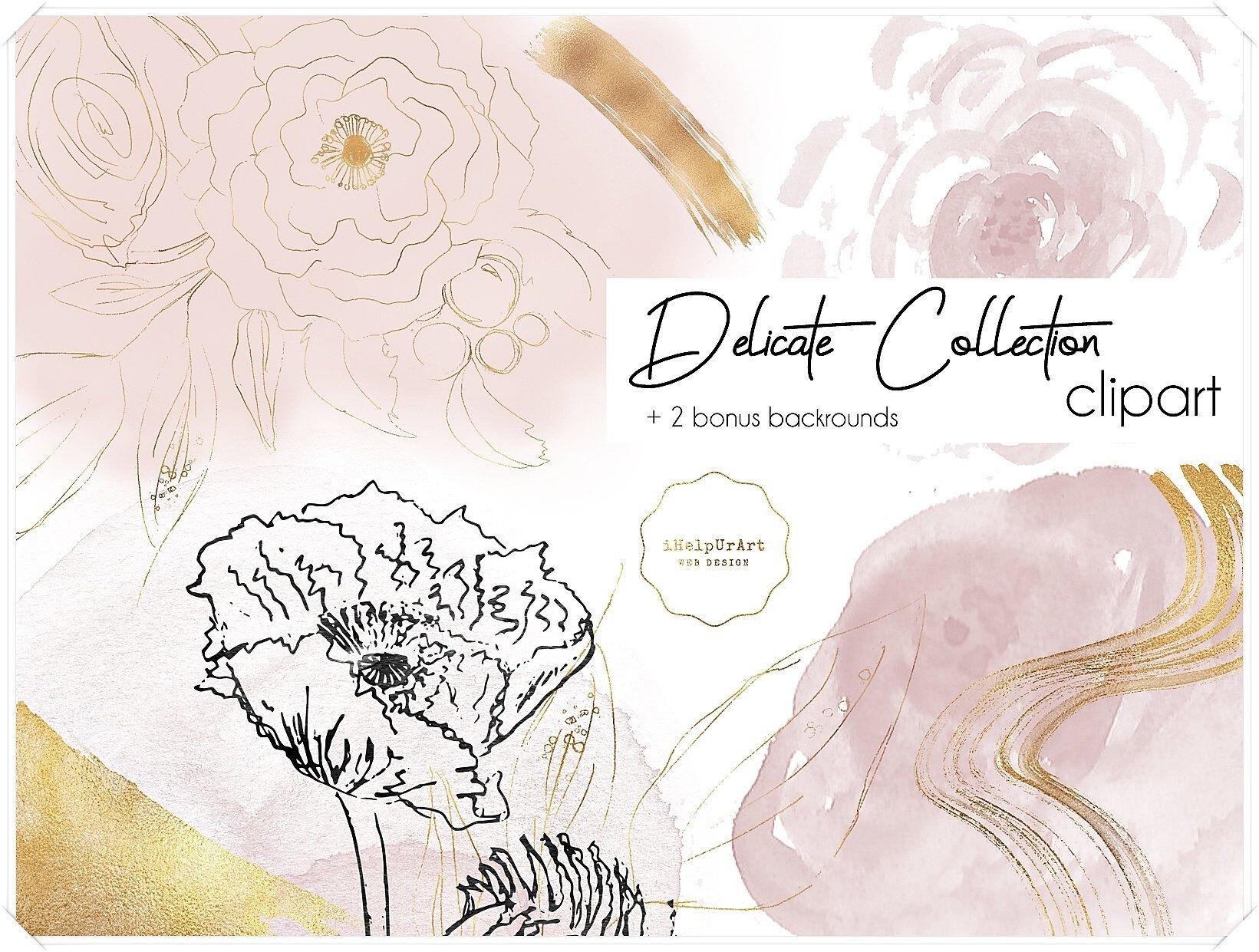 Delicate Collection Watercolor Design Bundle By Ihelpurart