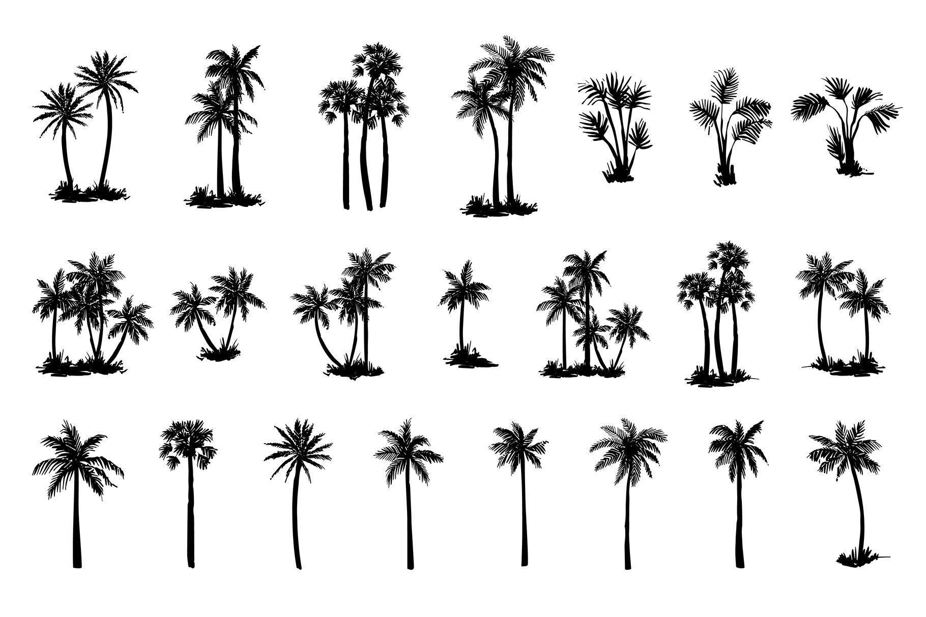 Hand Drawn Palm Tree Set By Artha Graphic Design Studio