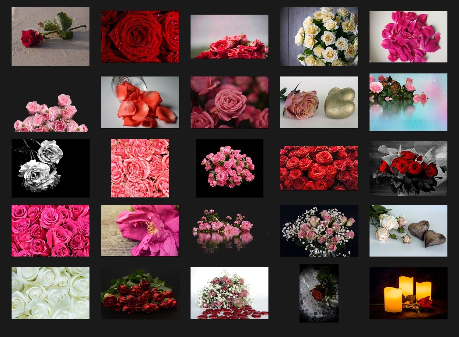 200 HIGH QUALITY ROSES, Flower, Digital Photoshop Overlays By