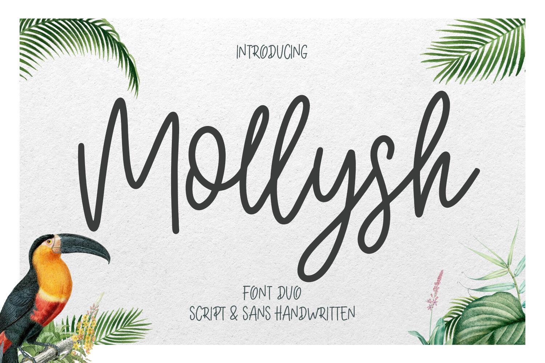 Mollysh Calligraphy Font By Maulana Creative Thehungryjpeg Com