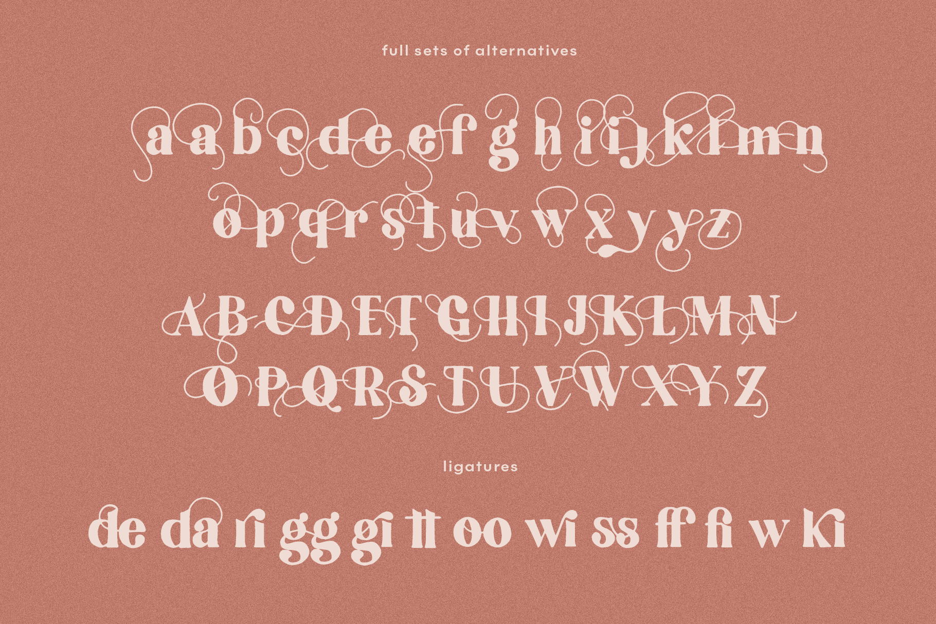 Collective Hand Drawn Serif Font With Swashes By Ka Designs