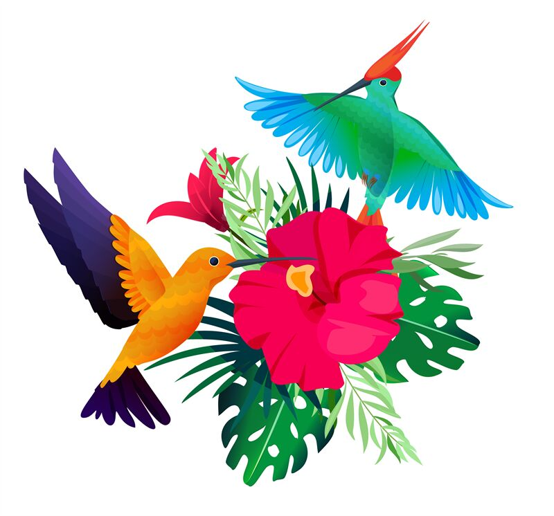 Tropical Birds Plants Exotic Colored Background With Parrots And