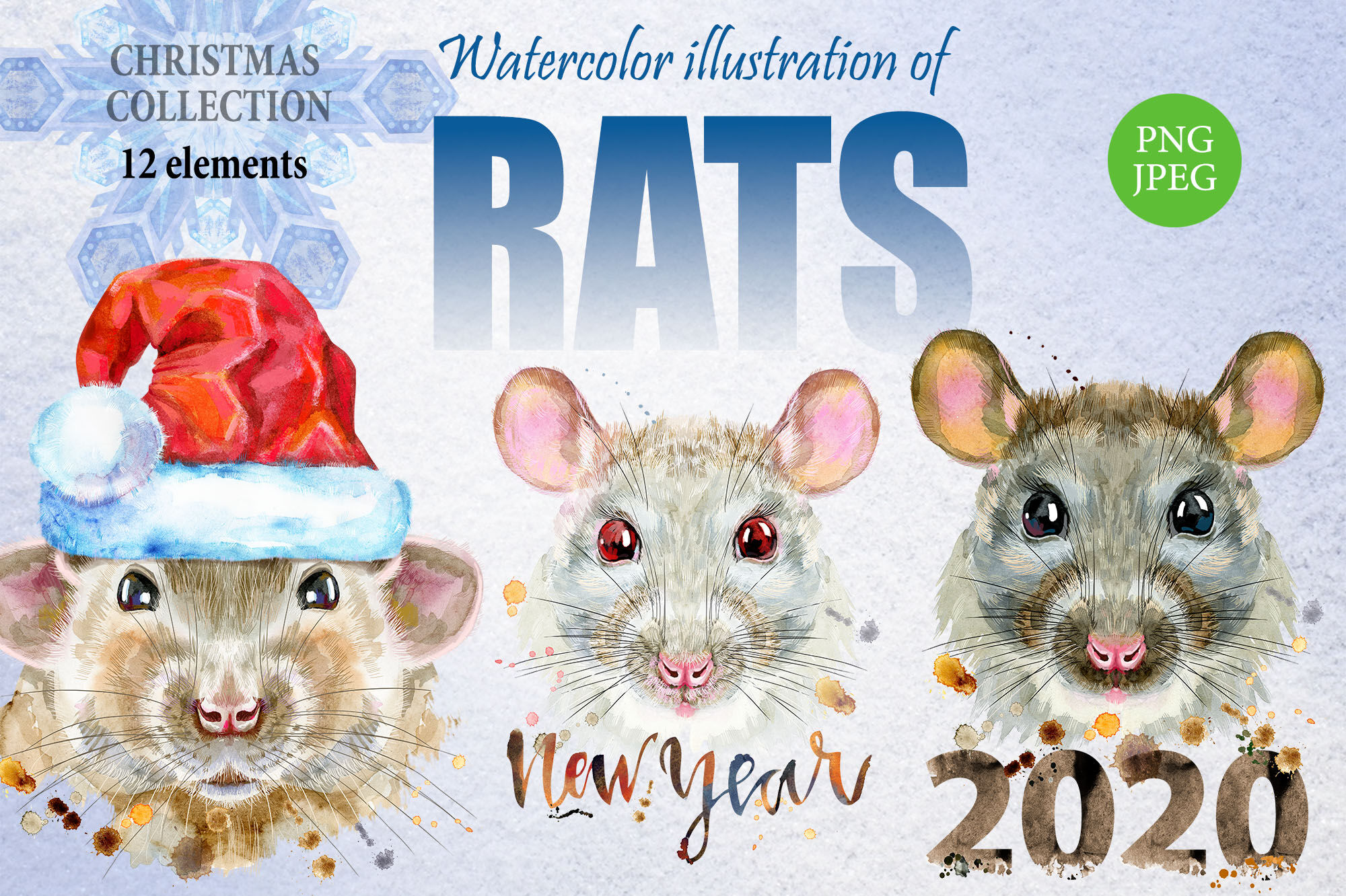 New Year Rat Collection By Watercolor Fantasies Thehungryjpeg Com