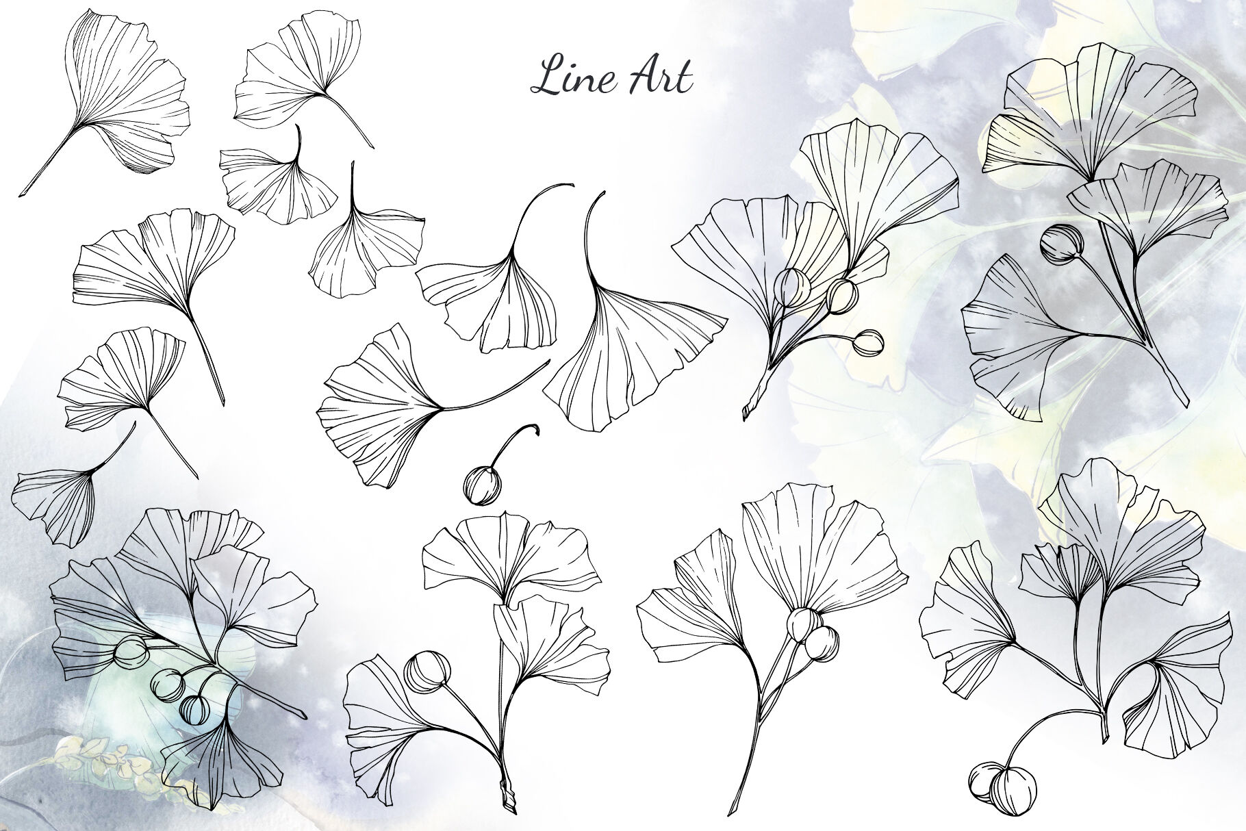 Green Ginkgo Leaves Watercolor And Vector Clipart Png By Mystocks