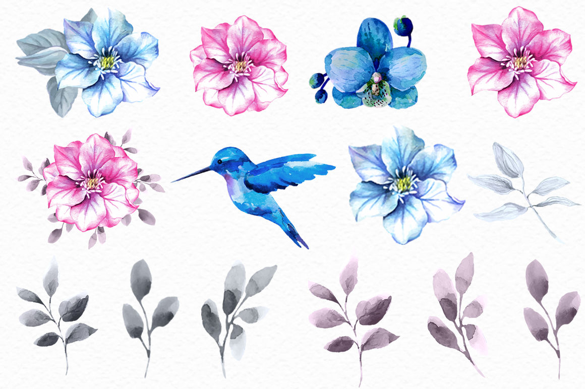 Pink And Blue Watercolor Collection By Colibriwatercolor