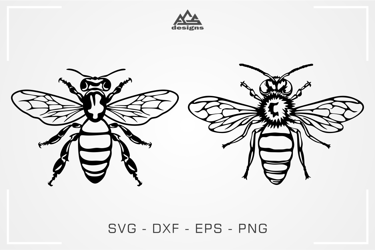 Bee Insect Svg Design By Agsdesign Thehungryjpeg Com