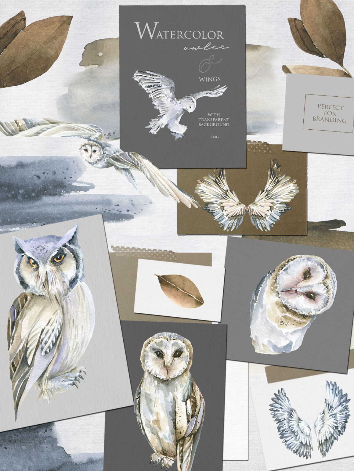 Winter Owl Watercolor Collection By 60seconds Thehungryjpeg Com