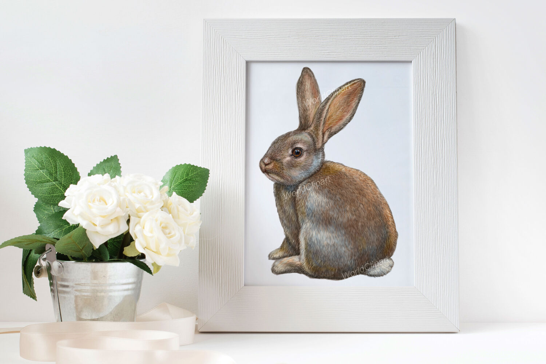 Rabbits Clipart Illustrations By World Illustrations