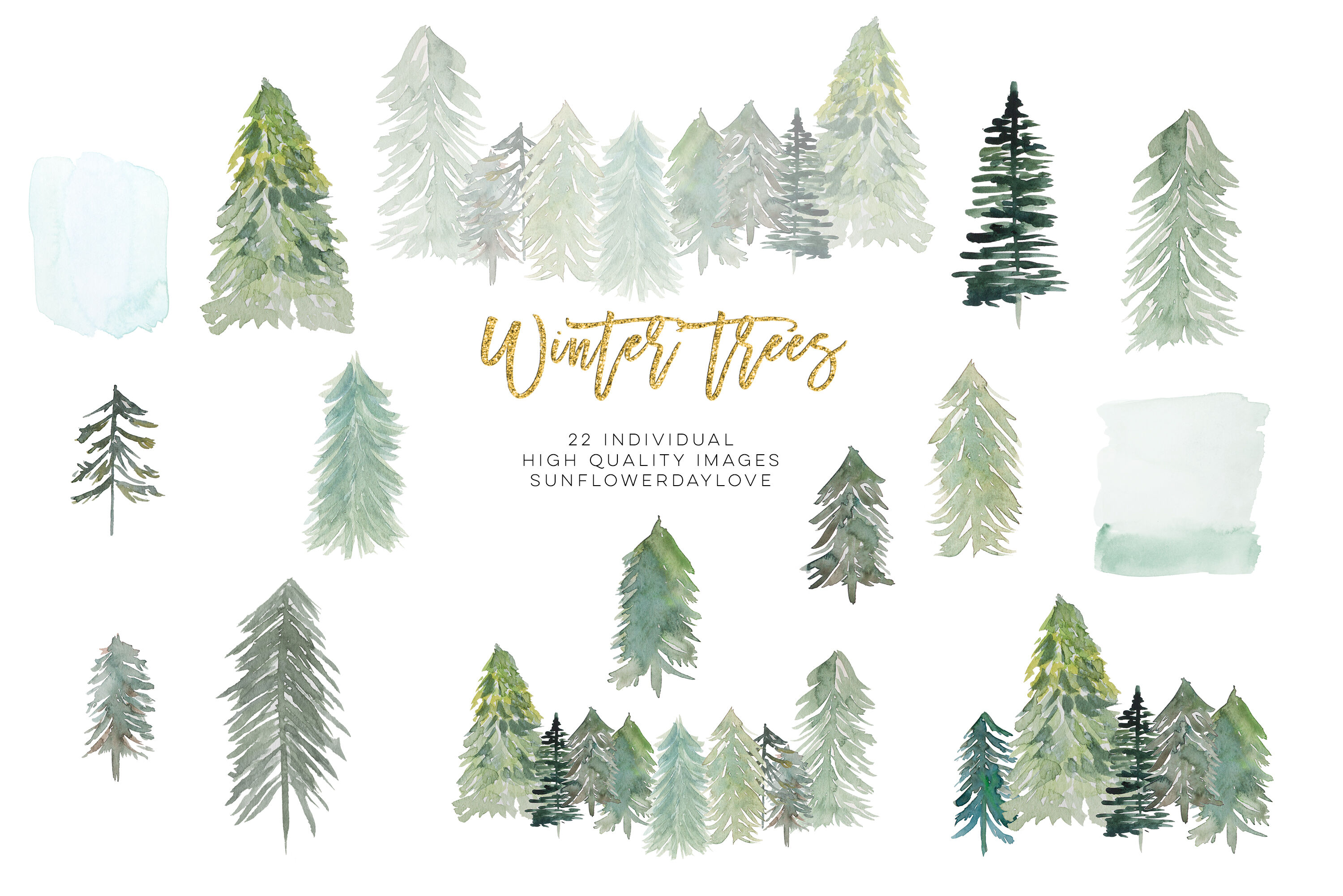 conifer forest trees clipart fir trees clipart watercolor pine trees by sunflower day love thehungryjpeg com conifer forest trees clipart fir trees