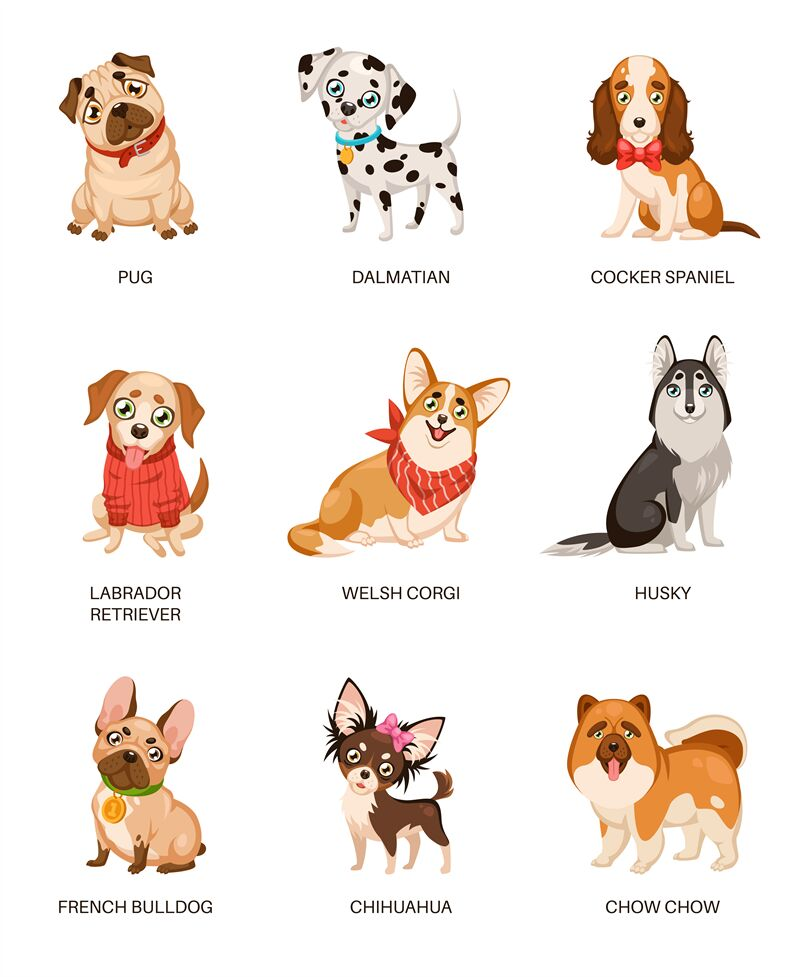Cute Dogs. Furry Human Friends Home Animals Different