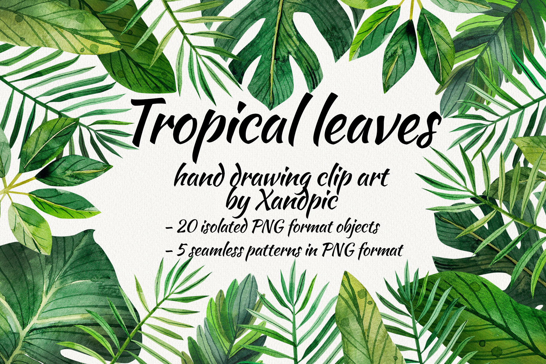 Watercolor Tropical Leaves Clip Art Digital Drawing Tropical Leaves By Xandpic Art Thehungryjpeg Com Tropical rainforest plants that can be grown. watercolor tropical leaves clip art