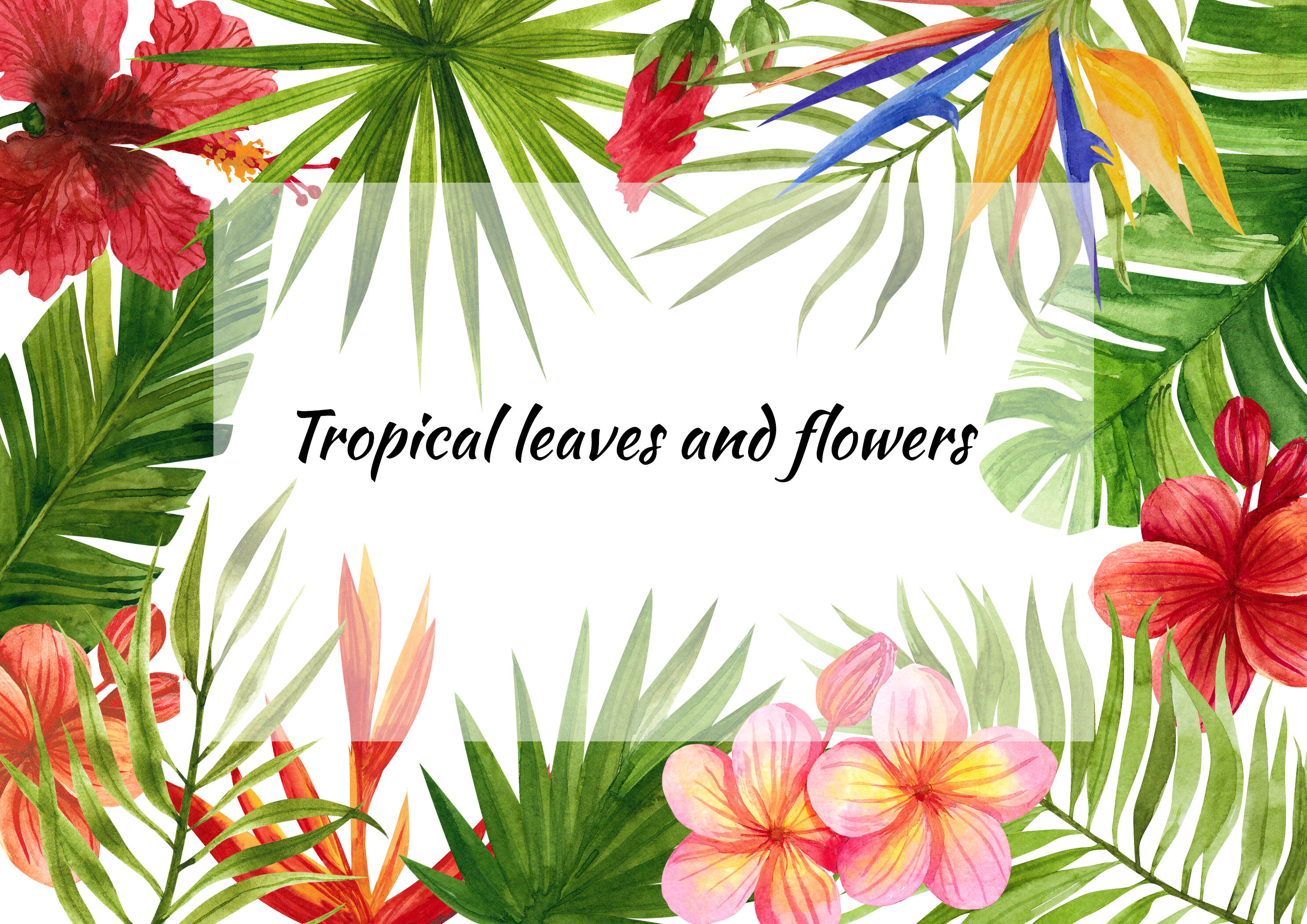 Watercolor Tropical Leaves And Flowers Clip Art Digital Drawing Trop By Xandpic Art Thehungryjpeg Com Polish your personal project or design with these tropical leaves. flowers clip art digital drawing trop