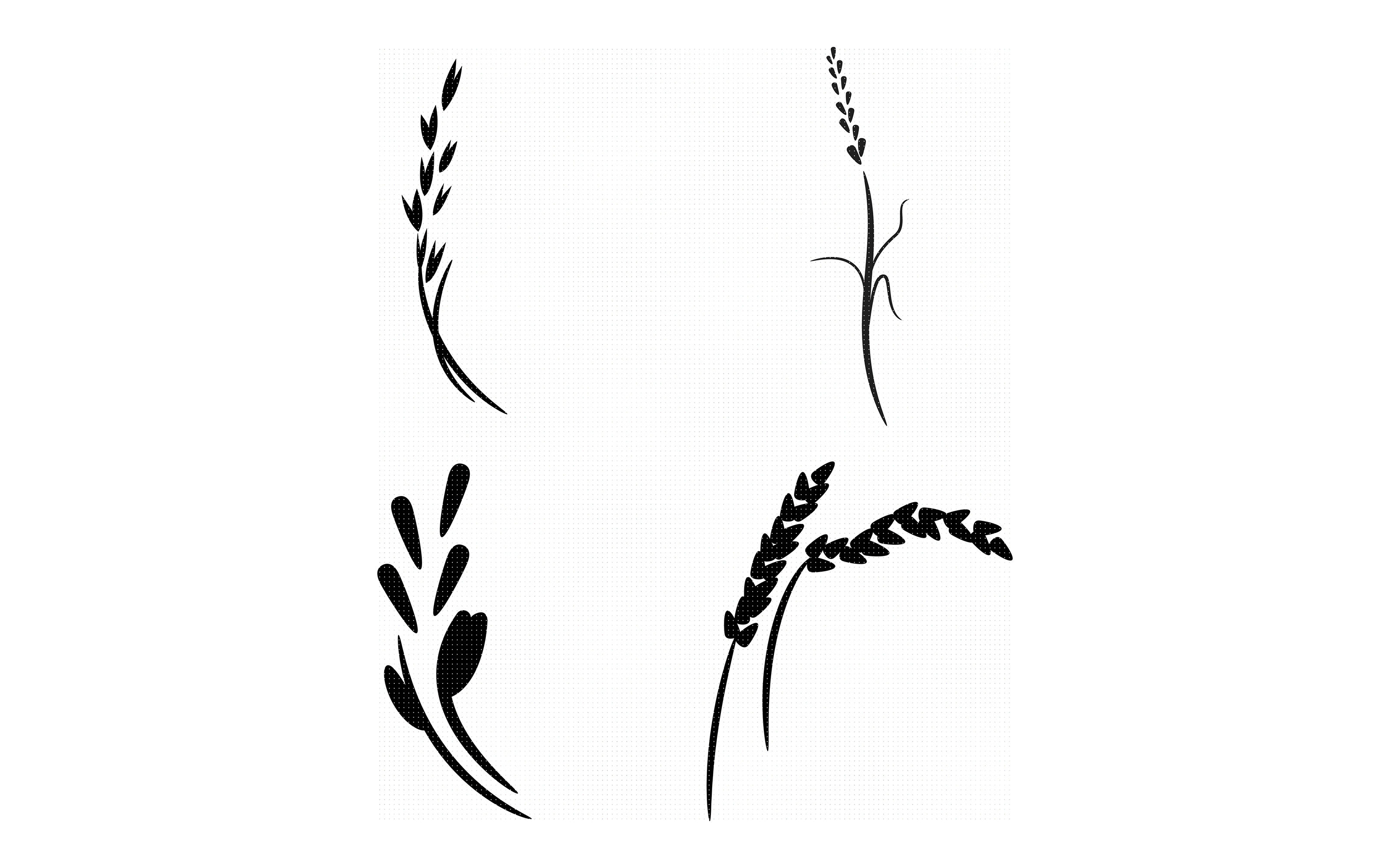Grain Oats Wheat Rice Cereal Svg Dxf Vector Eps Clipart