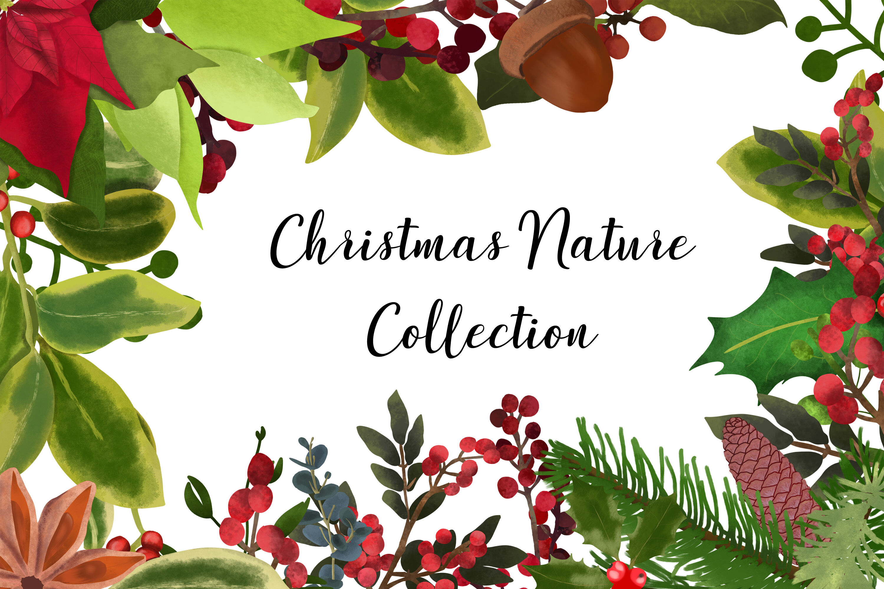 Christmas Nature Collection Watercolor Florals By Cc Paper