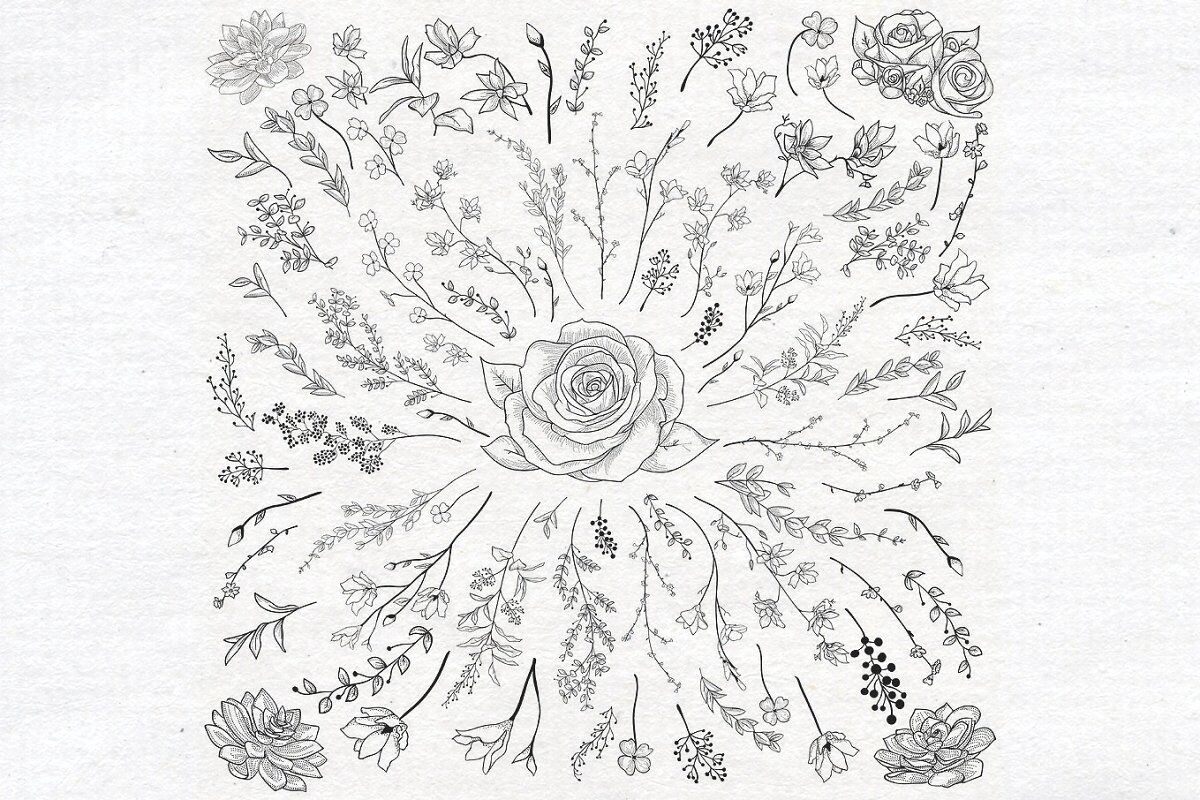 Individual Black Hand Drawn Florals Collection By O L Y A