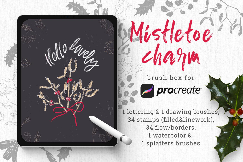 Mistletoe Brush Box For Procreate By Zzorna Art Thehungryjpeg Com