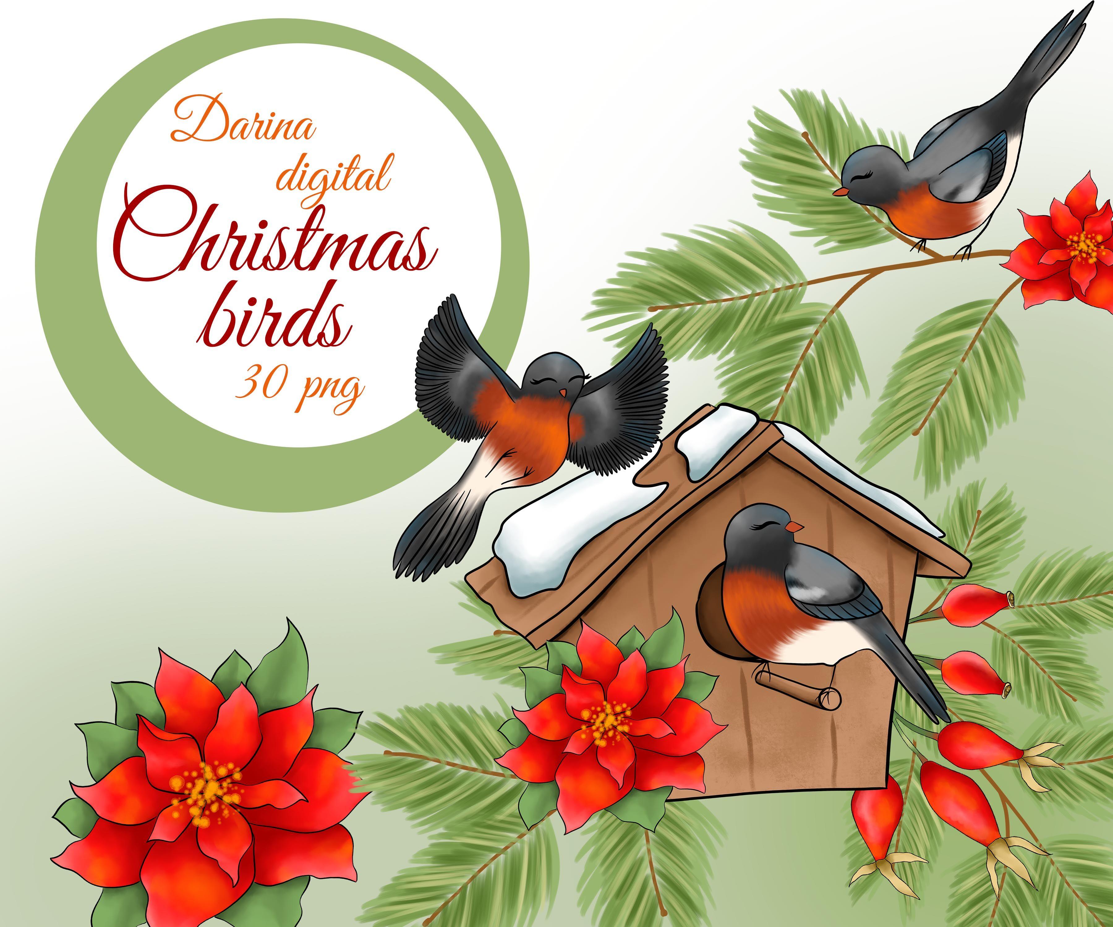 Christmas Bird Clipart By Digitaldesignsandart Thehungryjpeg Com