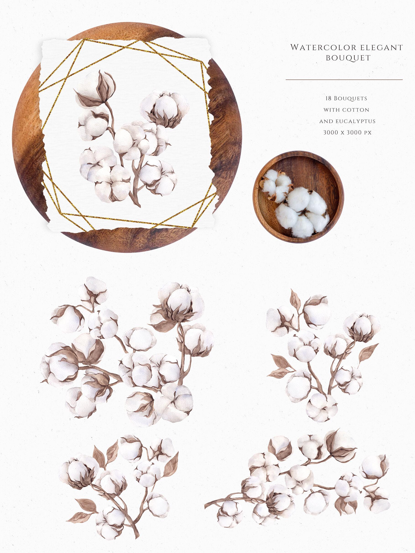 Cotton And Eucalyptus By Ma I Vi Thehungryjpeg Com