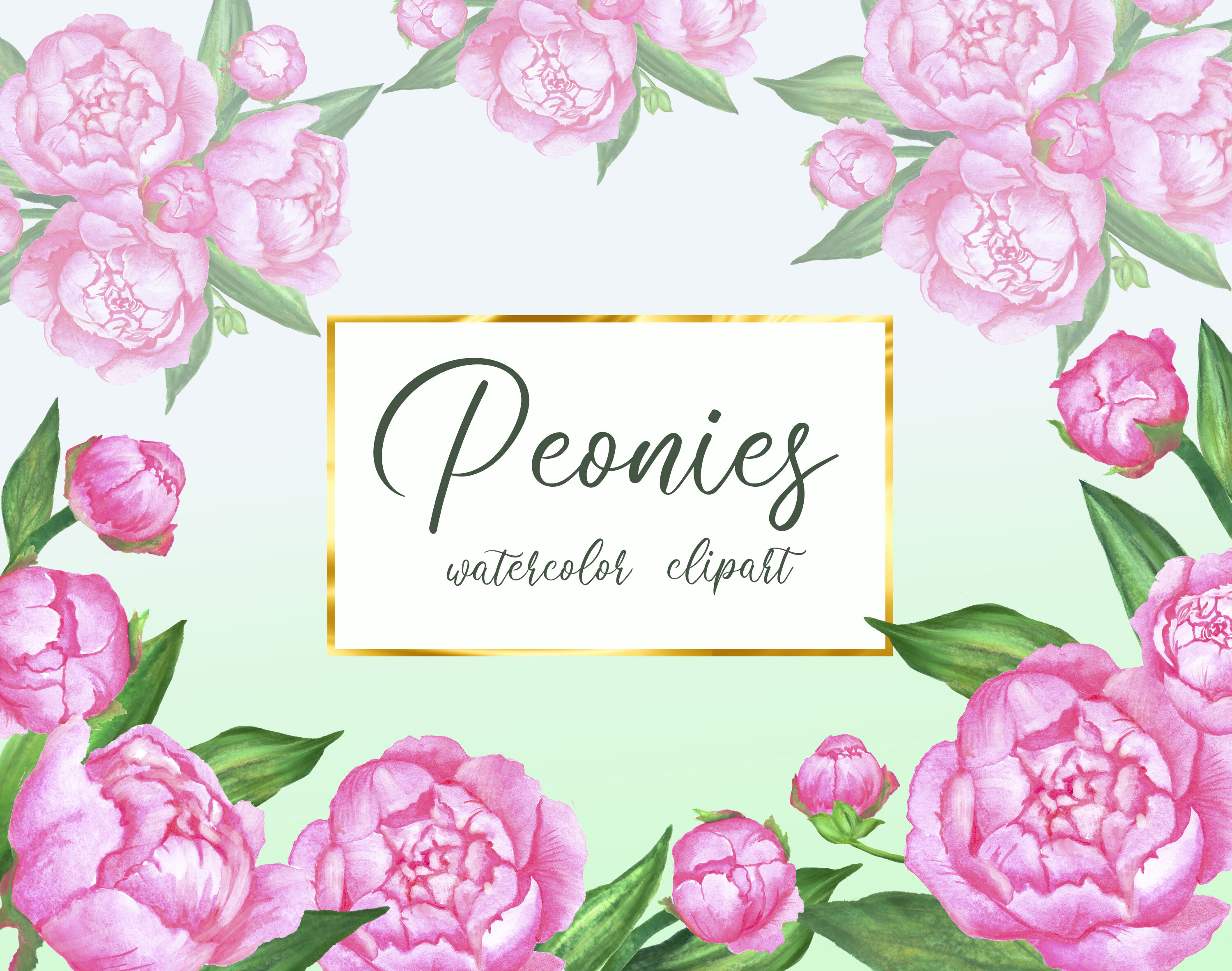 Watercolor Floral Clipart Spring Pink Peony Floral Frame And