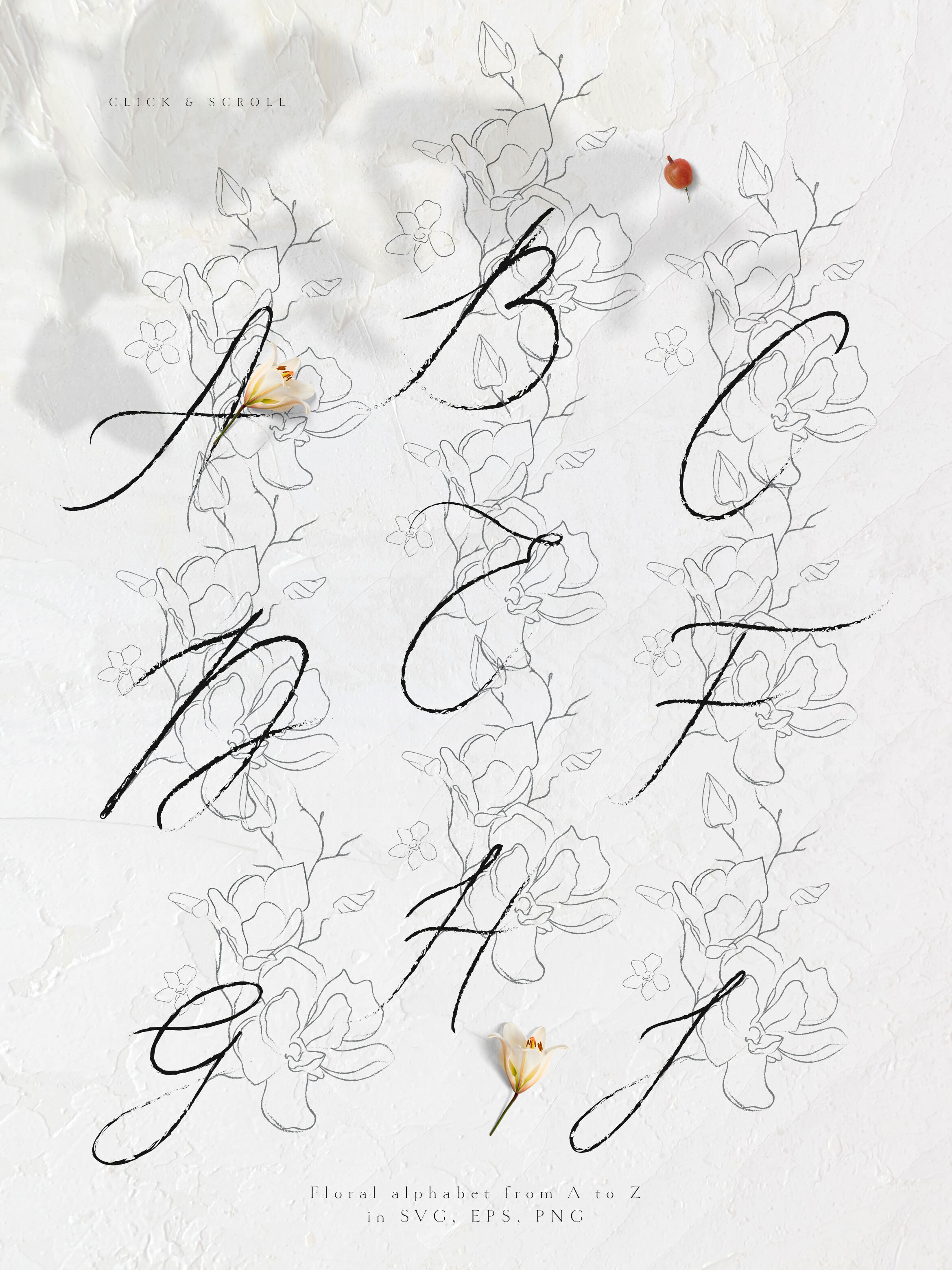 Handwritten Floral Letters Monograms Elements By O L Y A