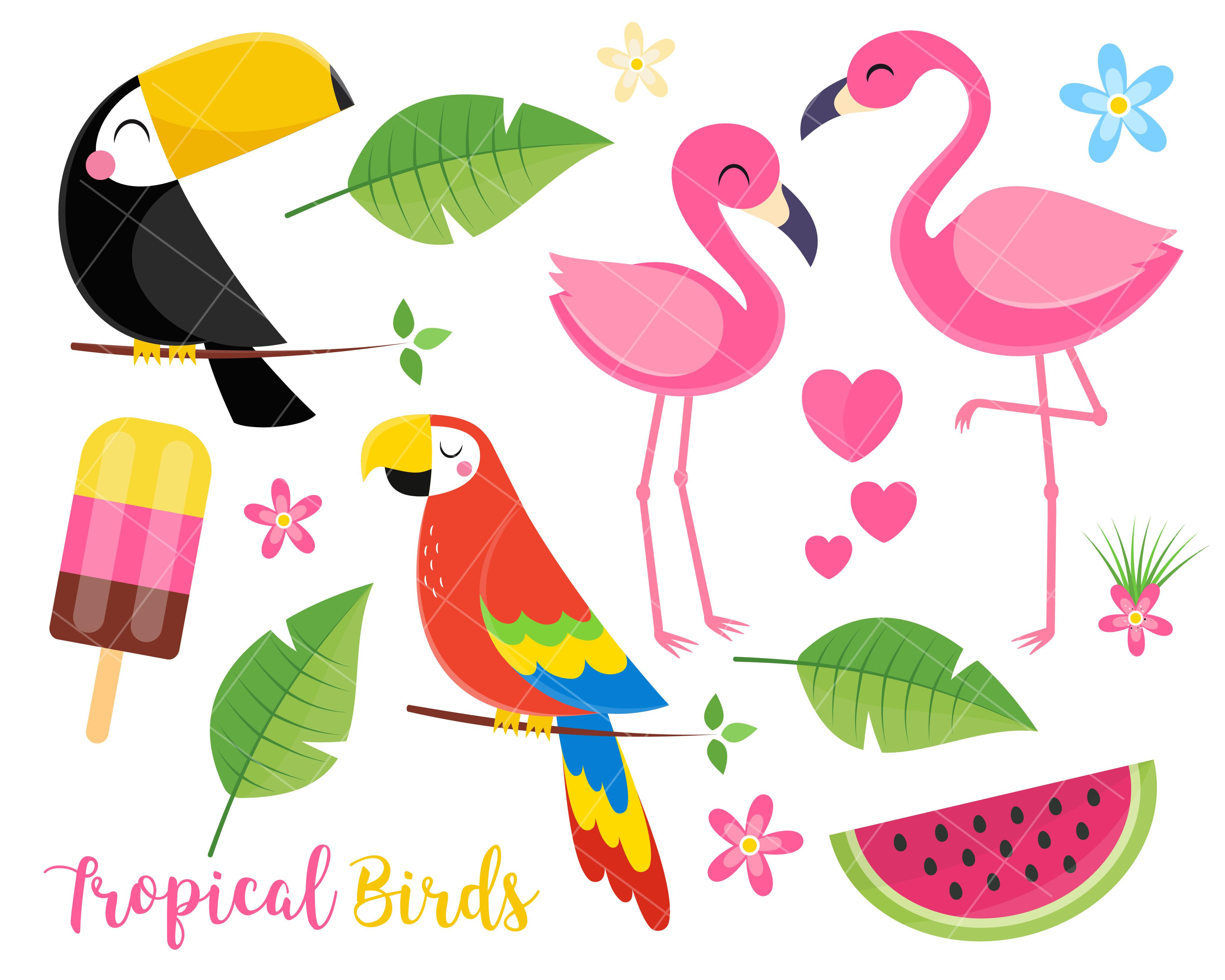 Tropical Summer Clipart Toucan Birds Flamingo Parrot Tropical