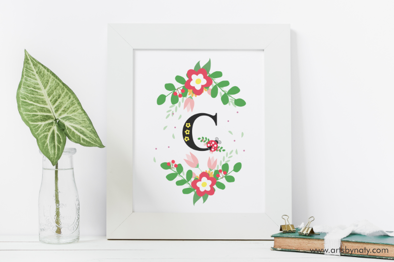 letters abcd monogram ladybug illustrationartsbynaty