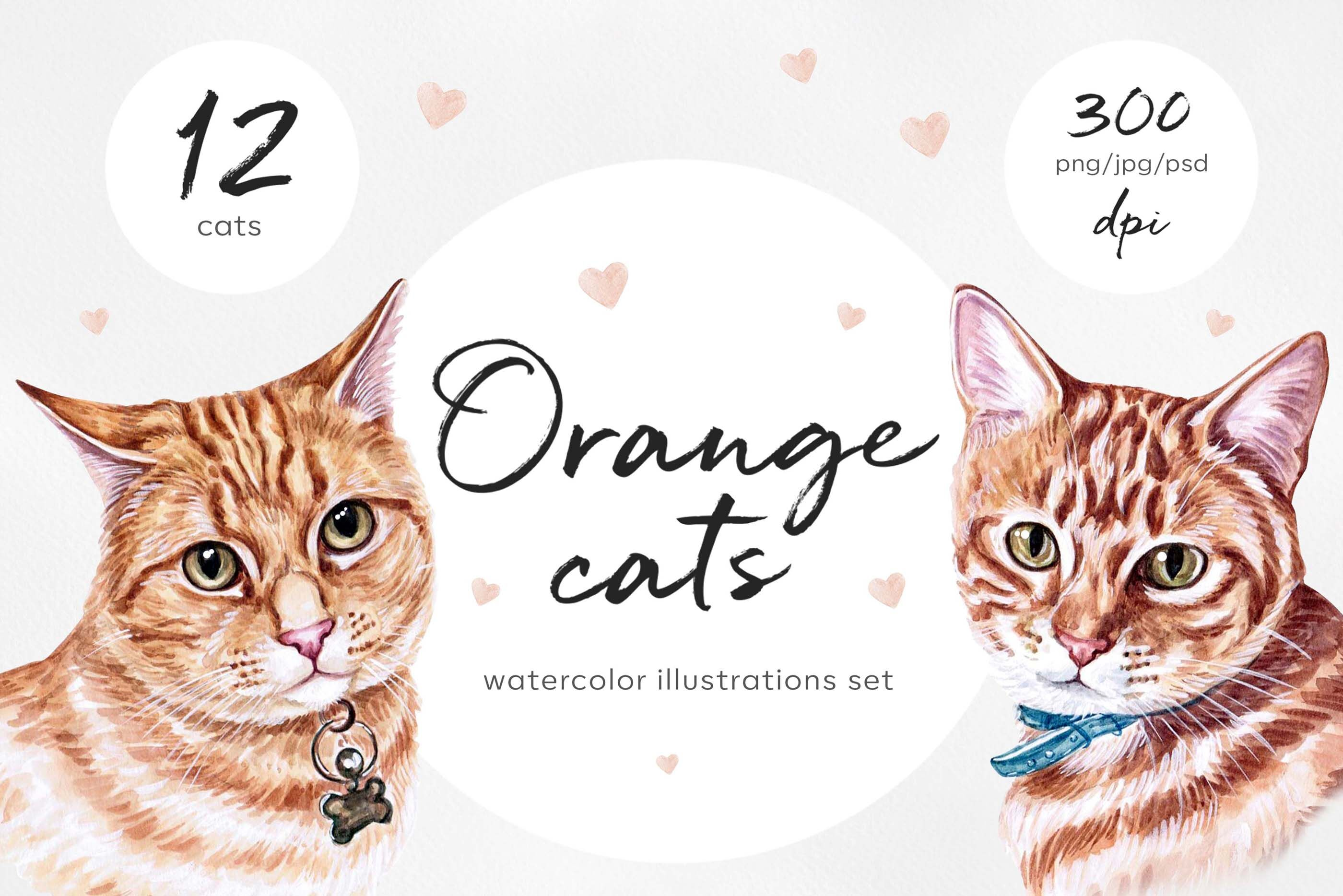 Watercolor Cat Illustrations Cute 12 Cats Kitty Meow By Susik