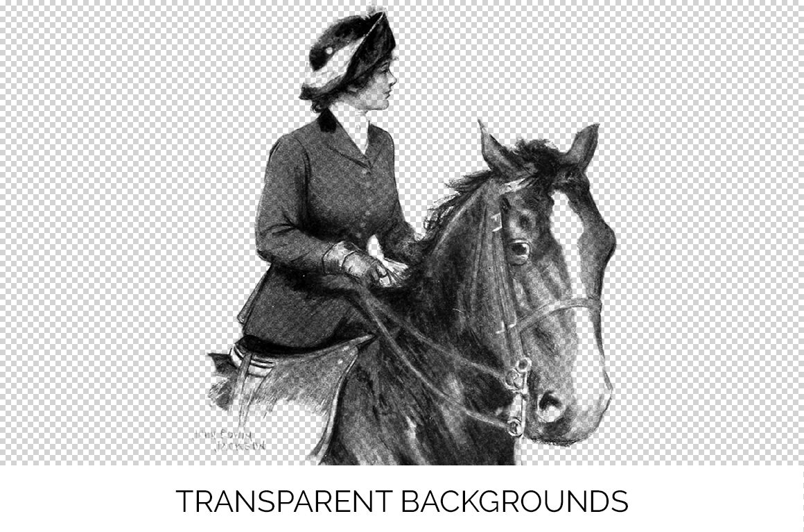 Horse Clipart Black And White By Enliven Designs Thehungryjpeg Com