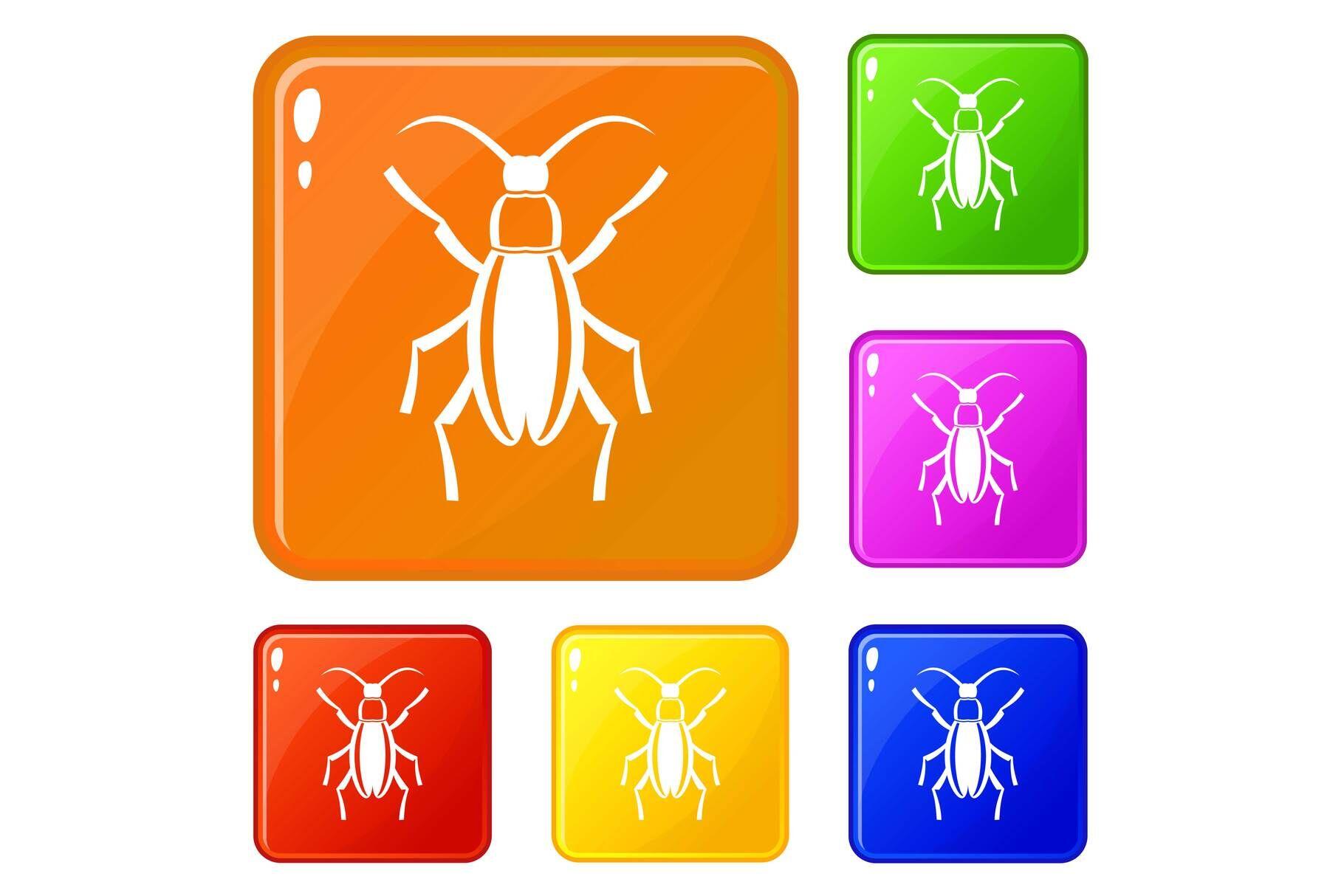 Beetle Bug Icons Set Vector Color By Ylivdesign Thehungryjpeg Com