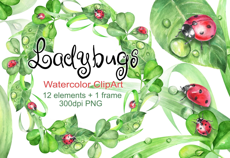 Watercolor Ladybugs Clipart Ladybug Grass By Vilenaart