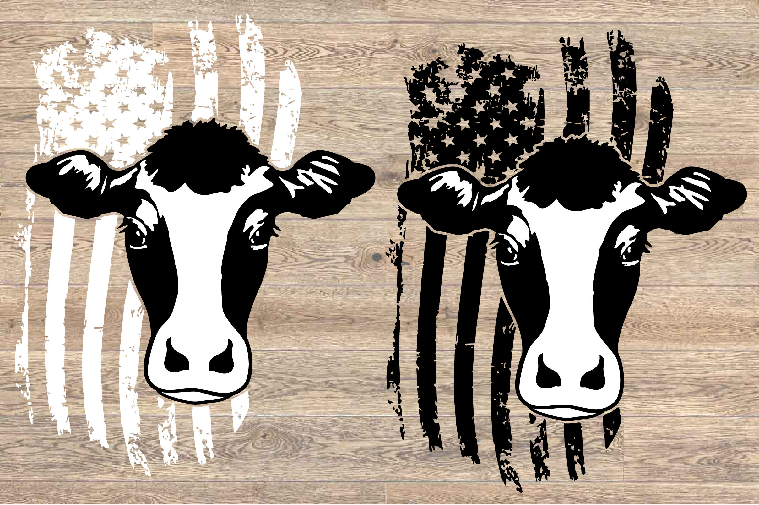 Cow Usa Flag Svg Cowboy 4th July Farm Milk 1672s By Hamhamart Thehungryjpeg Com