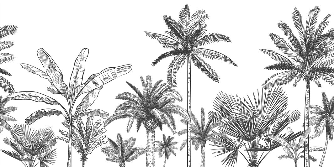 Seamless Horizontal Tropical Background Hand Drawn Palm Trees