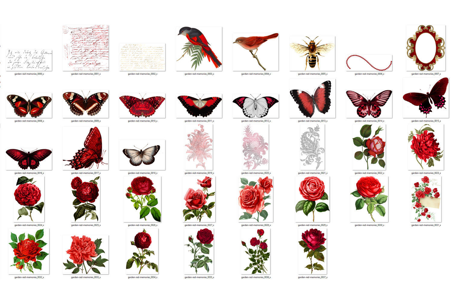 Garden Red Memories Clipart By Digital Curio Thehungryjpeg Com