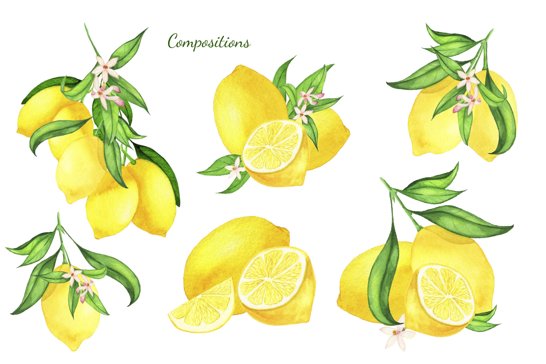 Watercolor Lemon Clipart Lemon Frame Lemon Wreath Summer By Svitlana Yanyeva Thehungryjpeg Com Find & download free graphic resources for lemon. watercolor lemon clipart lemon frame