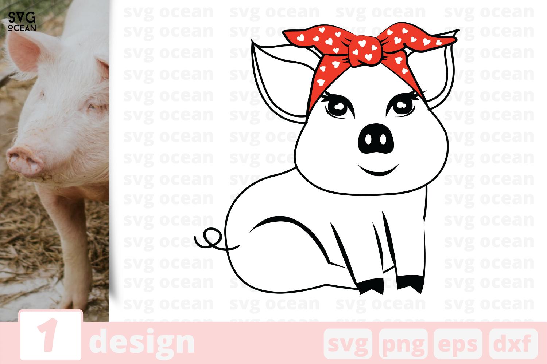 1 Pig Svg Bundle Animal Cricut Svg By Svgocean Thehungryjpeg Com