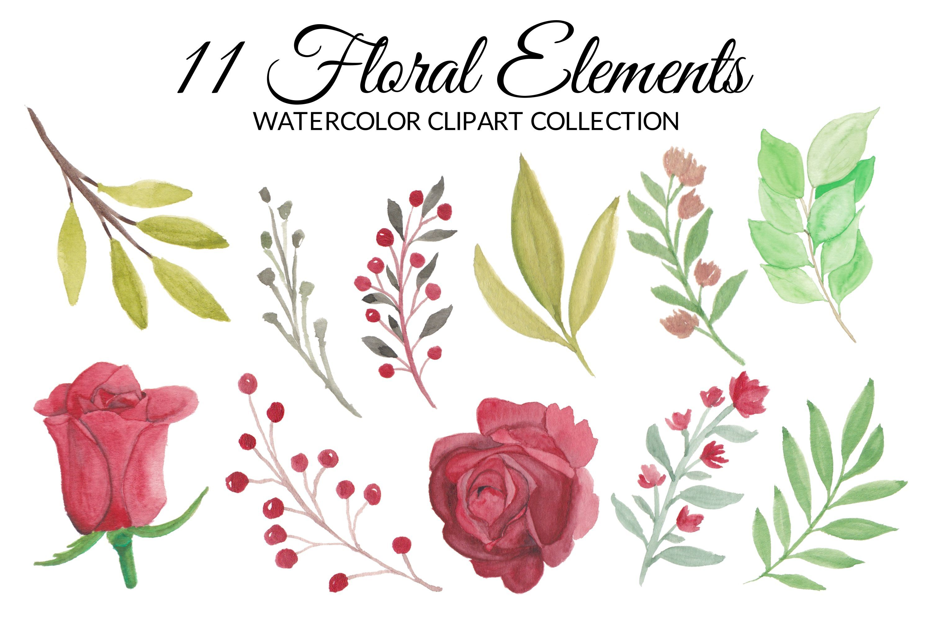 Red Rose Flower Watercolor Clipart Collection By Elsabenaa