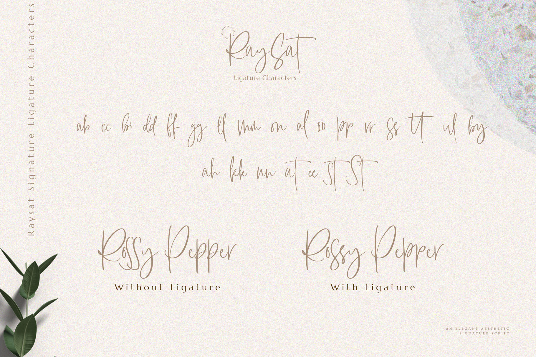 Raysat Signature By Mas Anis Thehungryjpeg Com