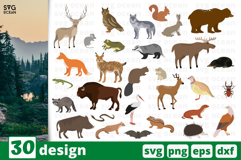 30 Forest Animals Svg Bundle Animals Cricut Svg By Svgocean