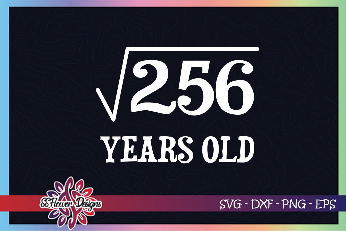 Funny Math Square Root 256 Birthday Svg 16 Years Old Svg By Ssflowerstore Thehungryjpeg Com