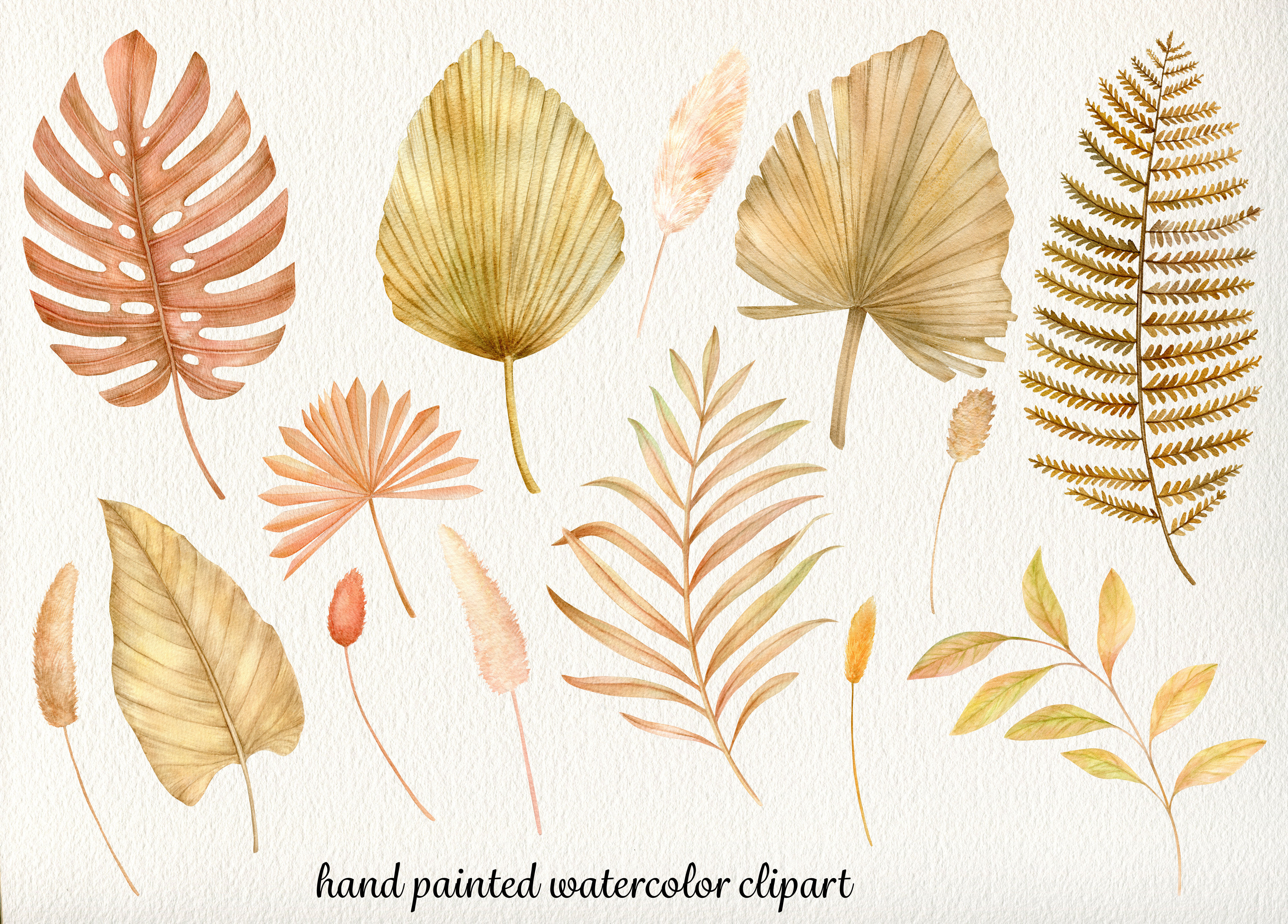 Watercolor Dried Palm Leaves Clipart Summer Tropical Flowers Clip Art By Svetlana Sintcova Thehungryjpeg Com Affordable and search from millions of royalty free images, photos and vectors. the hungry jpeg