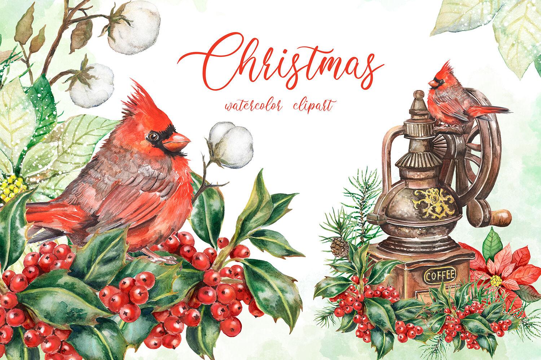 Merry Christmas Watercolor Clipart Holly Berries Red Cardinal Bird By Evgeniia Grebneva Painting Thehungryjpeg Com
