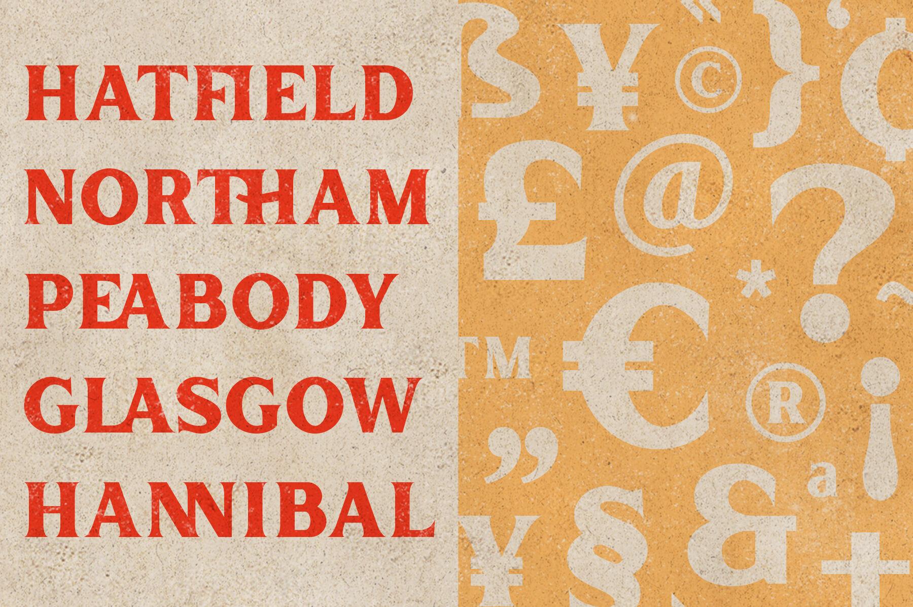 Inlander - Retro Display Font By edignwn® | TheHungryJPEG.com
