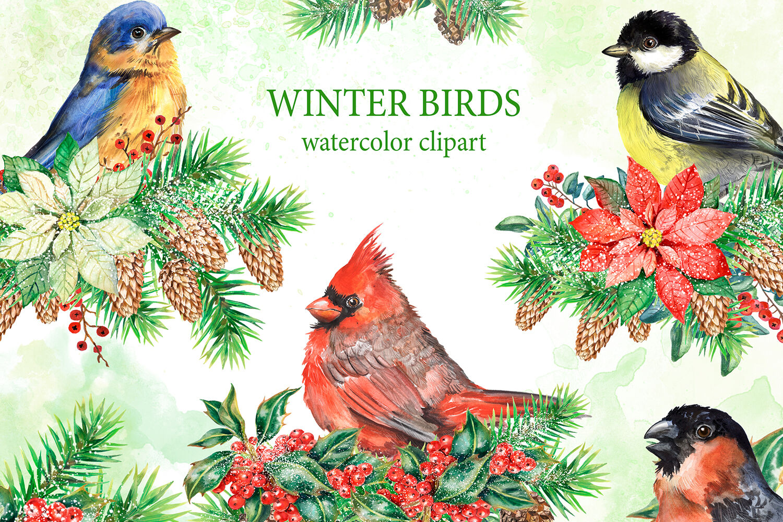 Winter Birds Watercolor Clipart Christmas Cardinal Bird Bullfinch By Evgeniia Grebneva Painting Thehungryjpeg Com