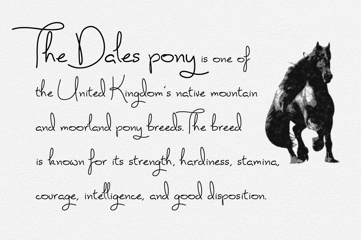 Paddy Font Handwriting Font By Joanne Marie Thehungryjpeg Com