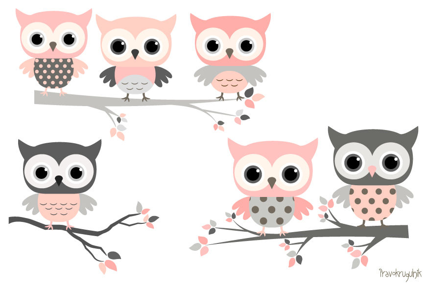Pink and grey owls set, Cute owl clipart, Kawaii owls clip ...