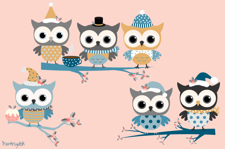 Winter Owls Clip Art Set Holiday Owl In Blue Colors Cute