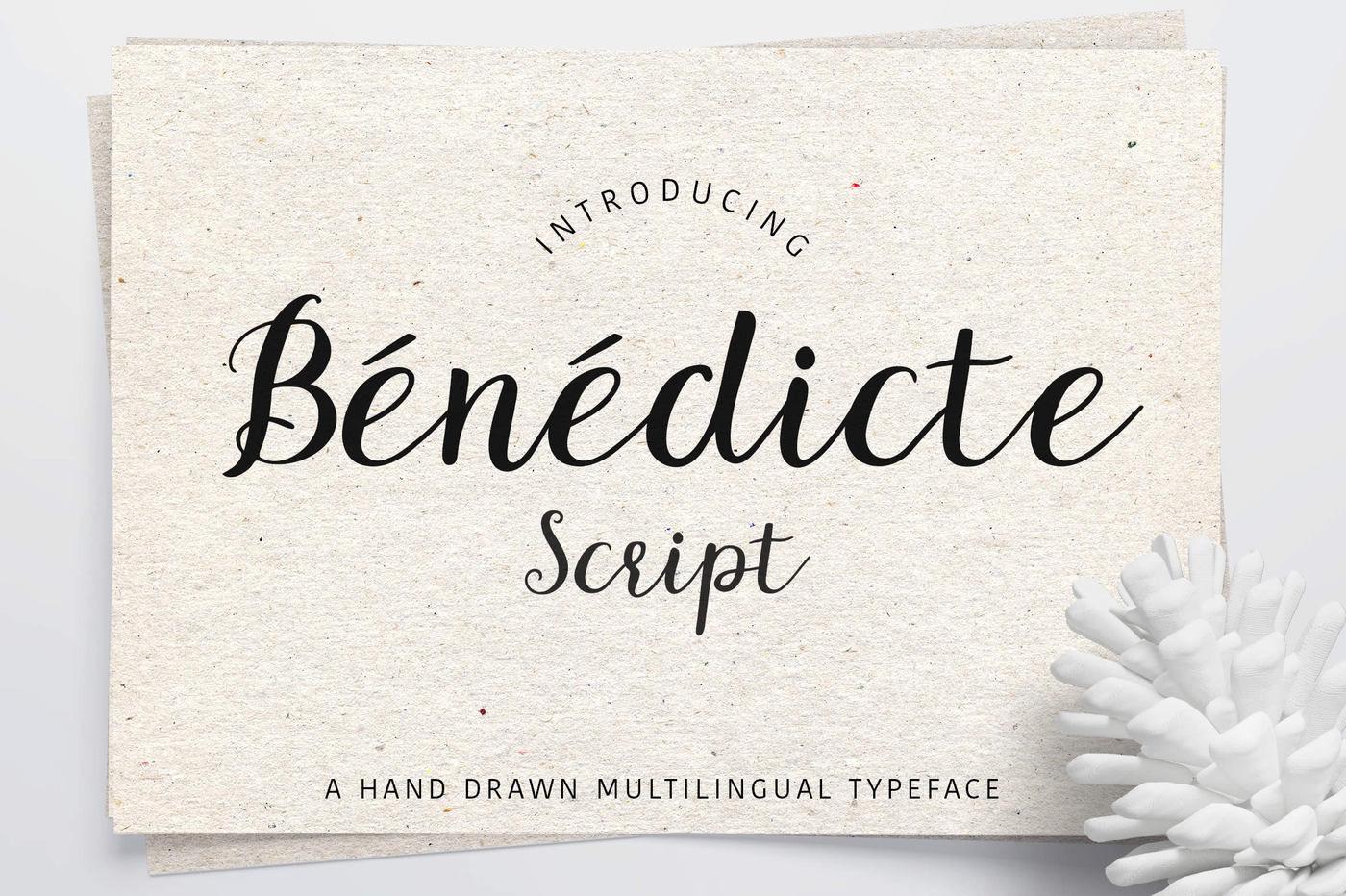Benedicte Scipt By Ayca Atalay Creative Thehungryjpeg Com